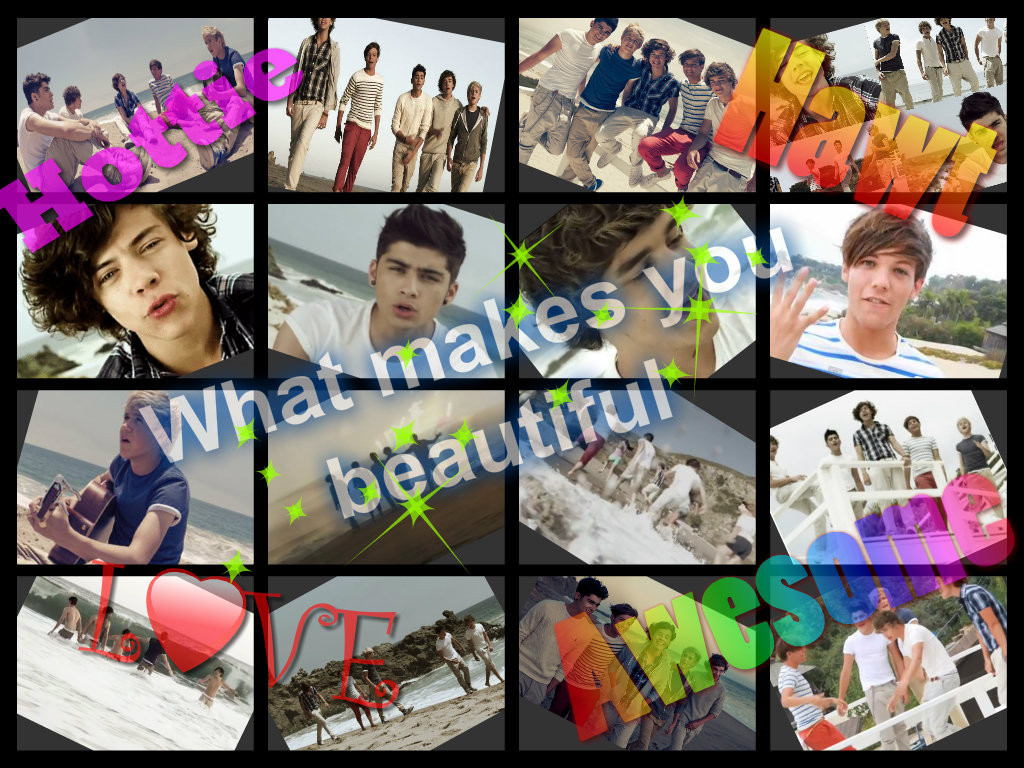 newWhat-makes-you-beautiful-one-direction-33272432-1024-768