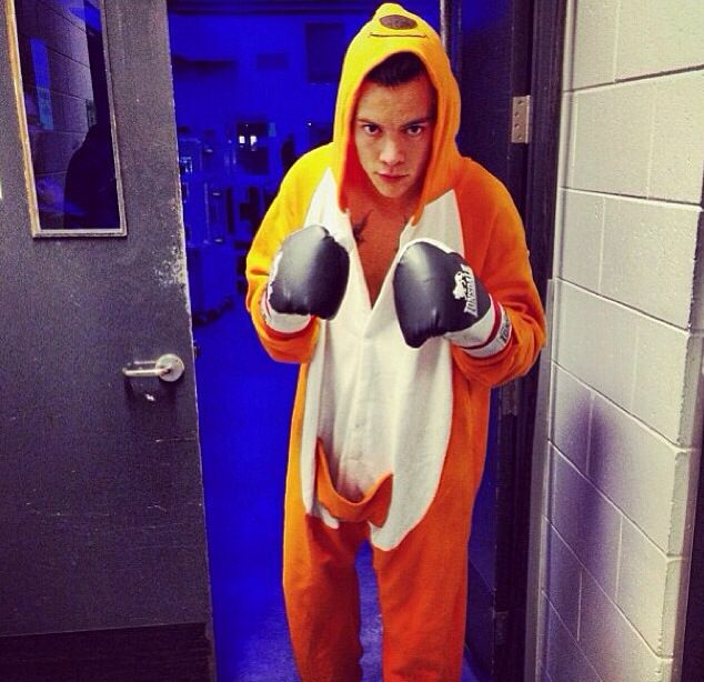 srrlaw@aol.comHarry Styles of One Directon in boxing pose.