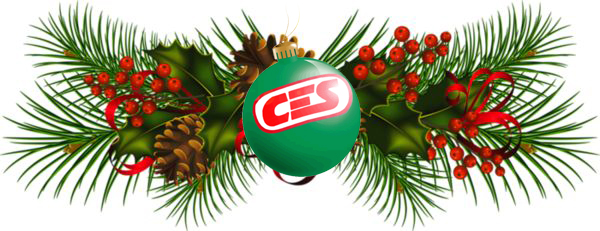 CES Boxing Logo