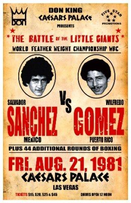 AUGUST2016Sanchez-Gomez fight poster 1