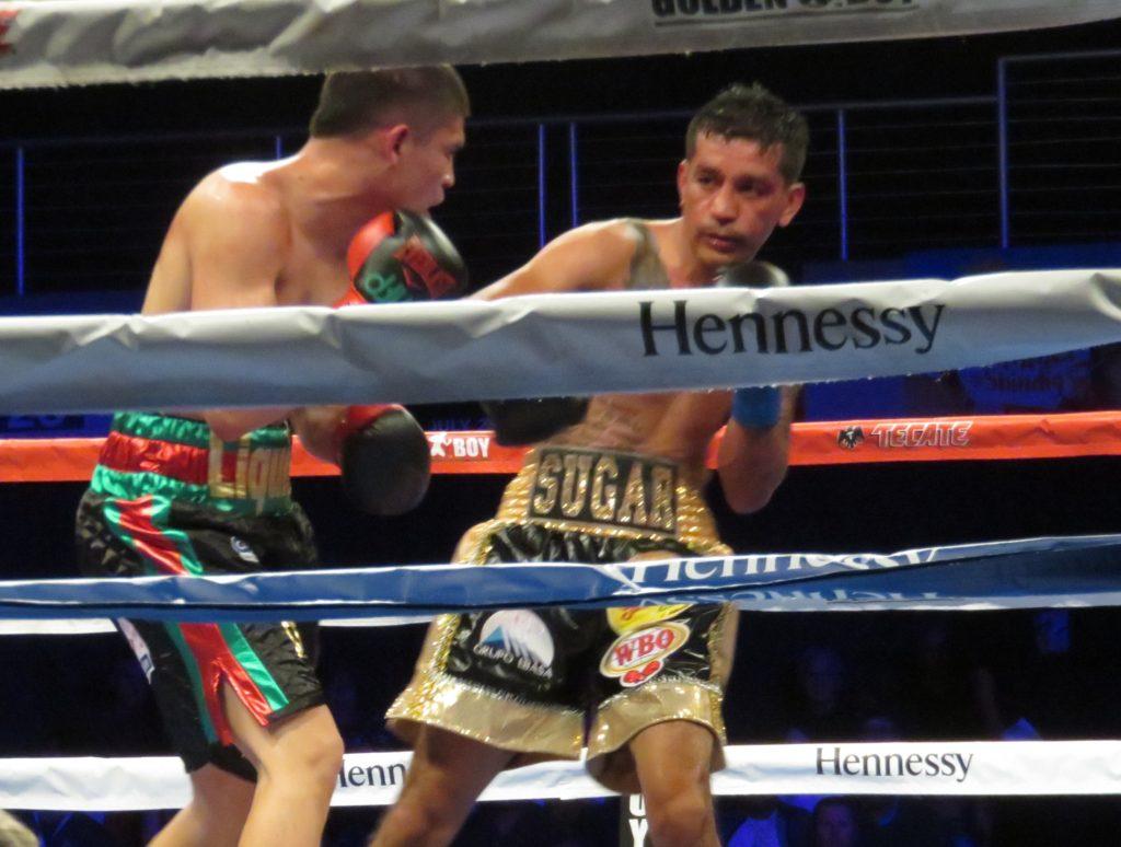 Diego de la Hoya vs Jose Salgado