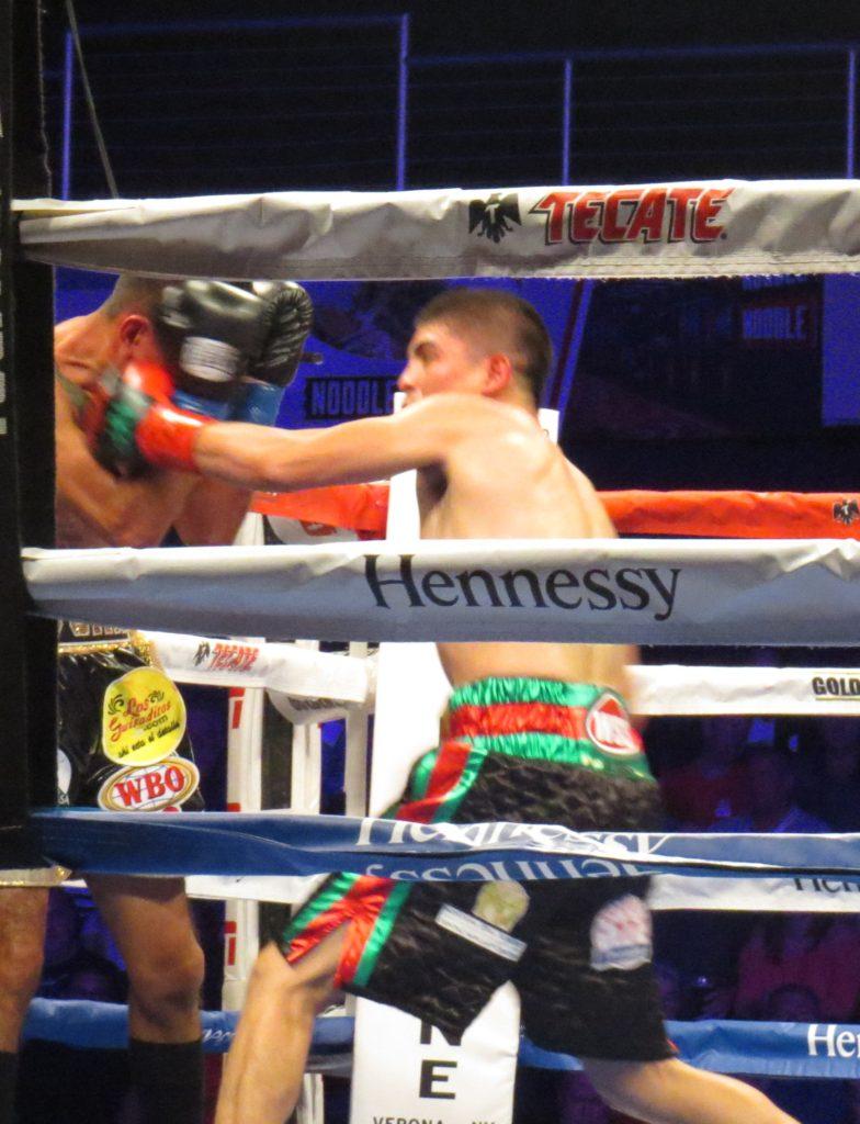 Diego de la Hoya (R) pounding Jose Salgado (L)